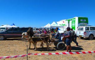 Cart Horse Protection Association Outreach
